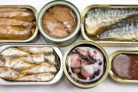 Riba u konzervi