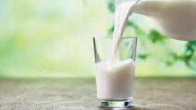 Sterilisano mleko
